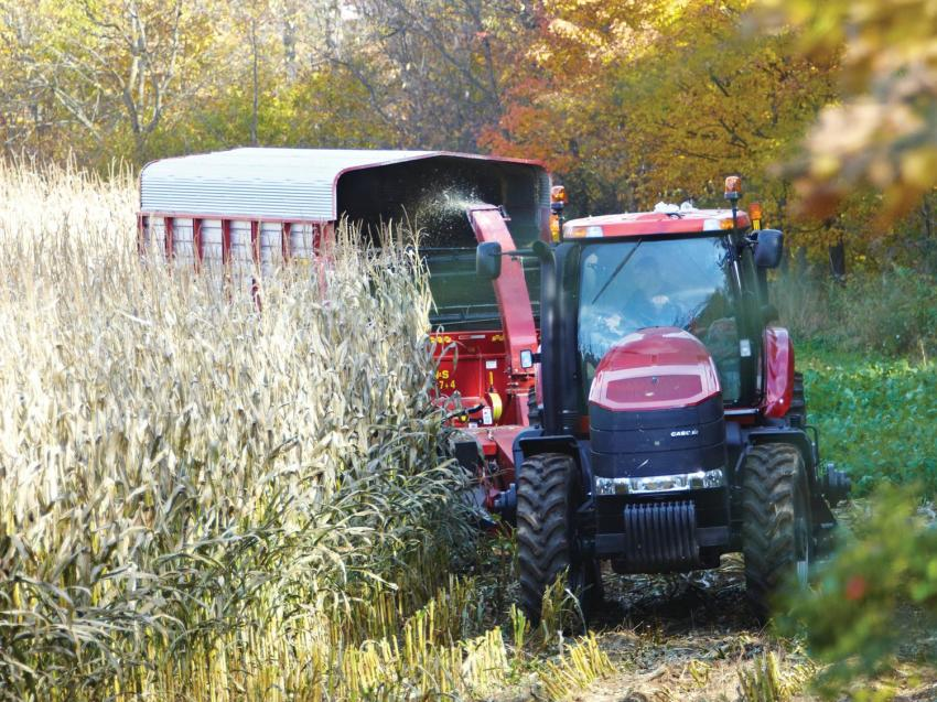 An agriculture student does some harvesting, driving a red tractor in the field.